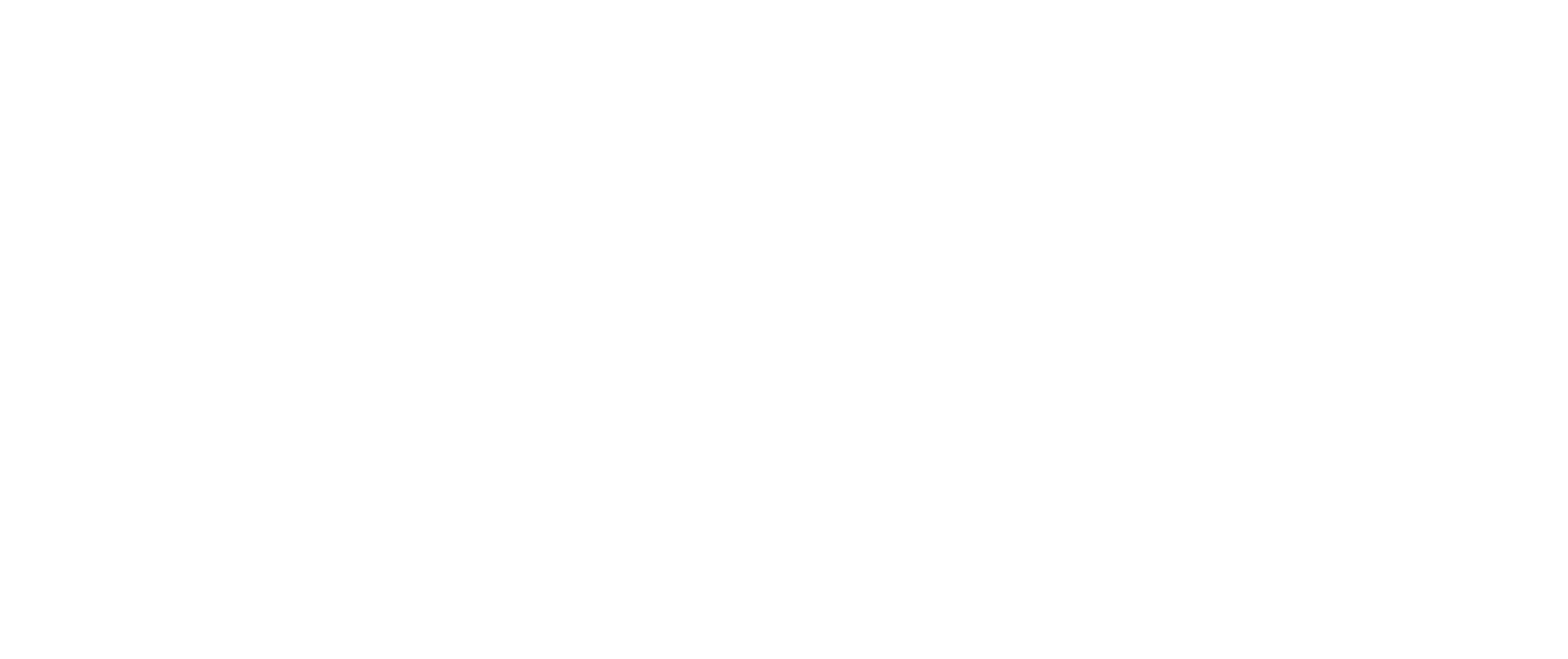 AVO logo white